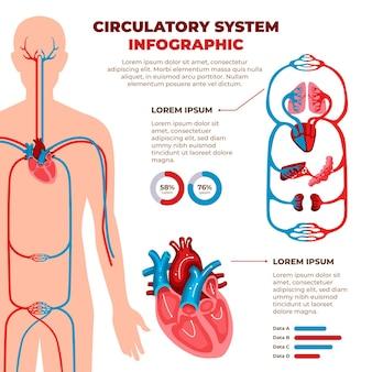 Infografica sistema circolatorio piatto