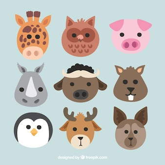 Flat collection of cute animal faces