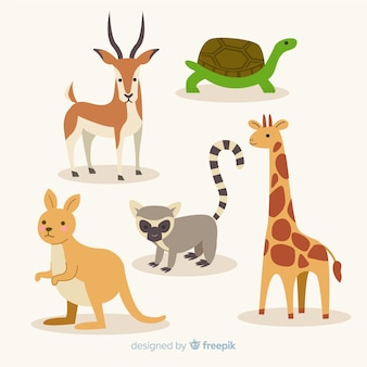 Flat collection of exotic animals