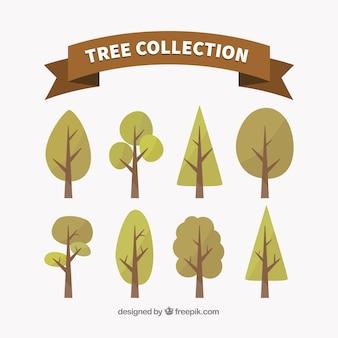 나무의 평면 컬렉션