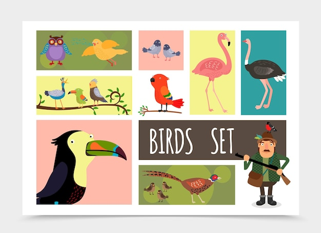 Flat colorful birds collection with hunter owl canary pigeons flamingo ostrich sparrows pheasant parrot toucan cardinal bird isolated  illustration