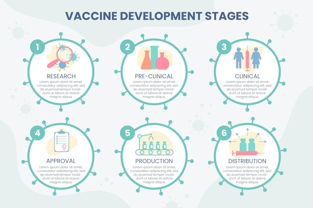 플랫 코로나 바이러스 백신 단계 infographic 템플릿