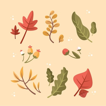 Flat design autumn leaves collection