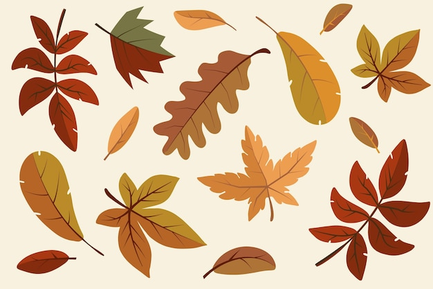 Collezione di foglie autunnali dal design piatto