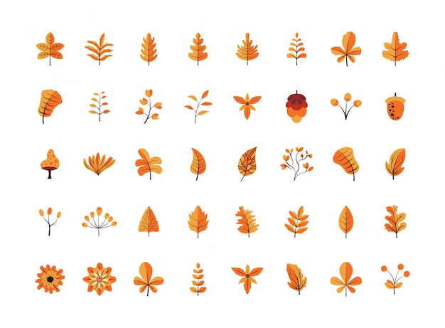 Flat design autumn leaves and flowers collection pack