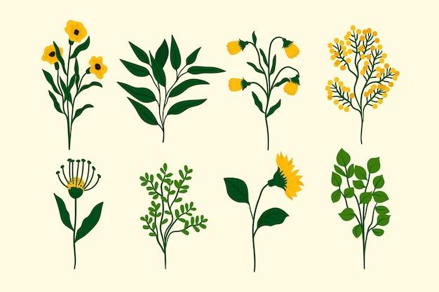 Set di fiori di primavera bella design piatto