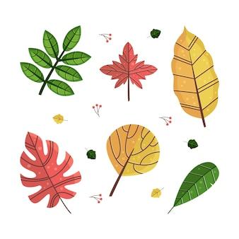 Collezione di foglie colorate dal design piatto