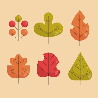 Flat design of colorful leaves