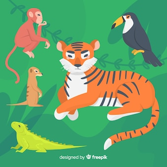 Flat design colourful animals illustrated set
