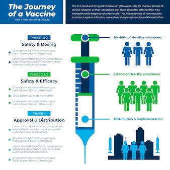 Flat design coronavirus vaccine phases infographic