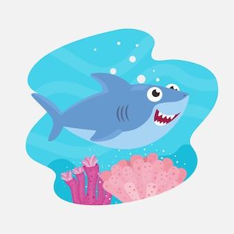 Flat design cute baby shark