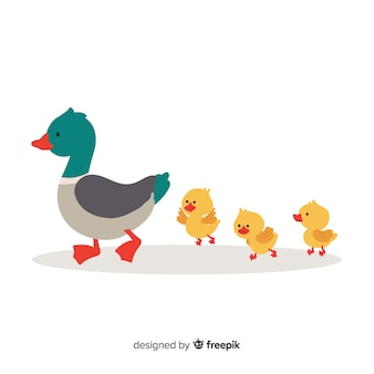 Flat design cute mother duck and ducklings
