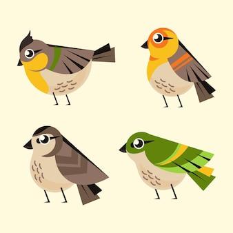 Flat design cute robin collection