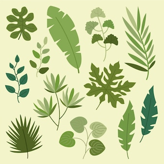 Flat design green leaves collection