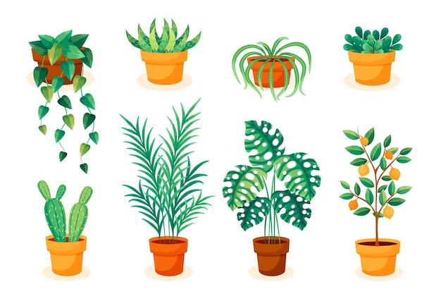 Коллекция комнатных растений в плоском дизайне