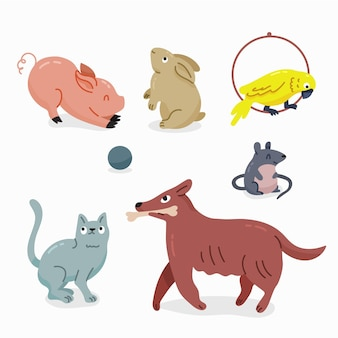 Flat design illustration different pets pack