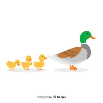 Flat design mother duck and her ducklings