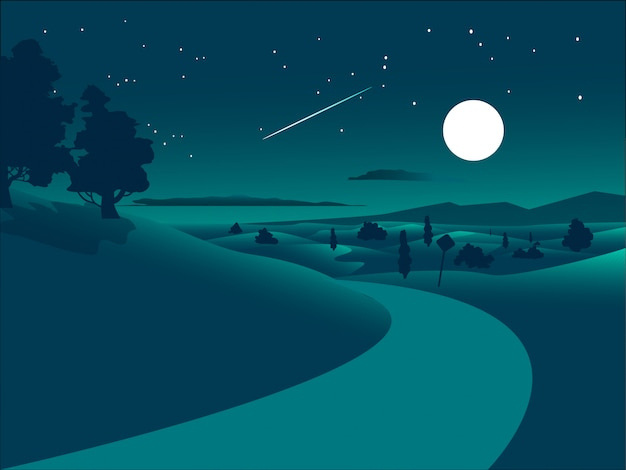 Flat design night landscape  with road in the desert and starry sky