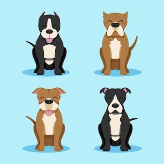 Flat design pitbull collection