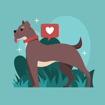 Flat design pitbull illustration