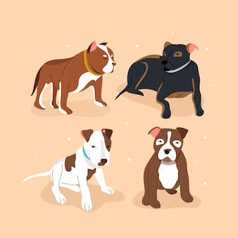 Flat design pitbull pack