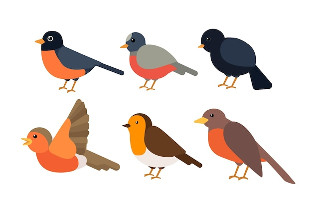 Flat design robin collection