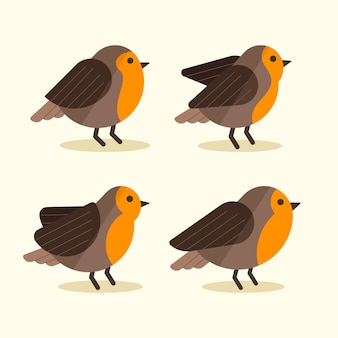 Flat design of robin collection