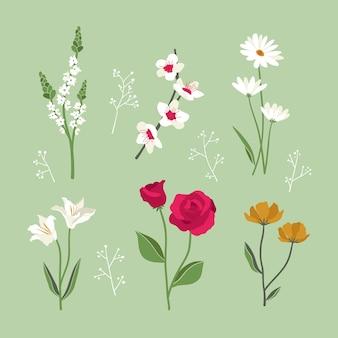 Плоский дизайн весенних цветущих цветов