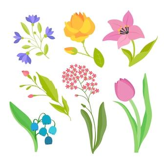 Flat design spring flower collection