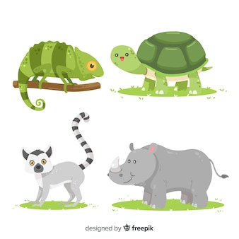 Flat design tropical animal collection