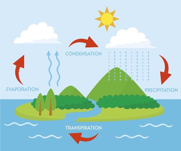 Illustrazione del ciclo dell'acqua dal design piatto