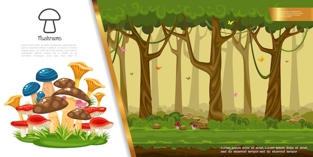 Flat edible mushrooms colorful concept with different mushrooms growing in summer forest