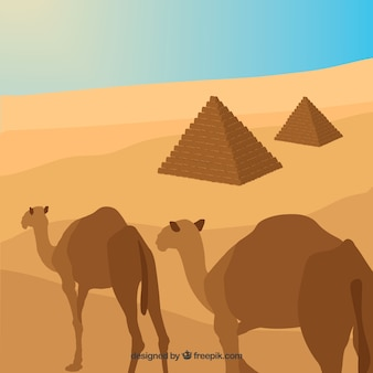 Flat egypt pyramids landscape with caravan of camels