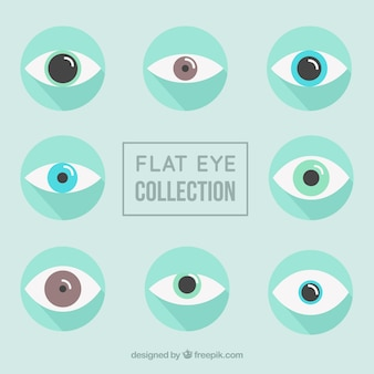 Flat eyes with different colors Free Vector