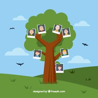 Flat family tree with decorative birds