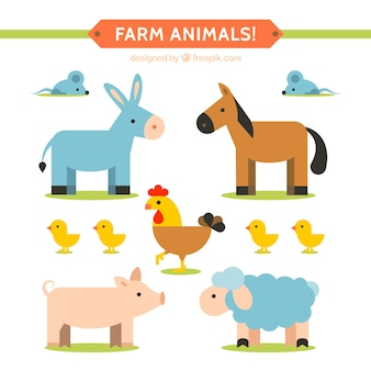Piatto farm animal collection