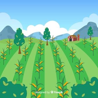 Flat farm landscape