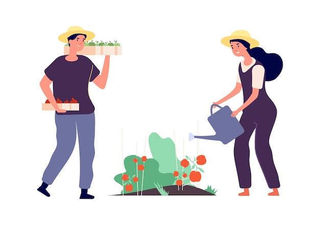 フラット農家。農業従事者、果物野菜家族農場。木製の箱を持つ孤立した男。植物に水をまく女性
