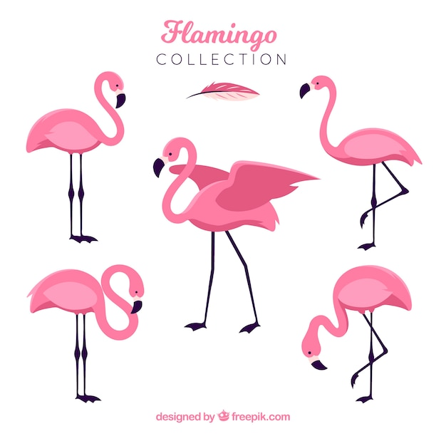 Other Art Supplies Art Supplies Fun Stickers Flamingos Theme