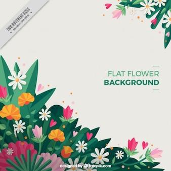 Плоский цветок фон с тюльпанами