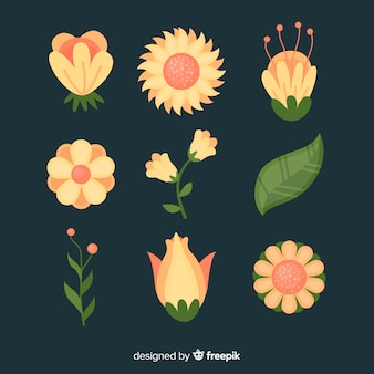 Flat flower and leaf collection