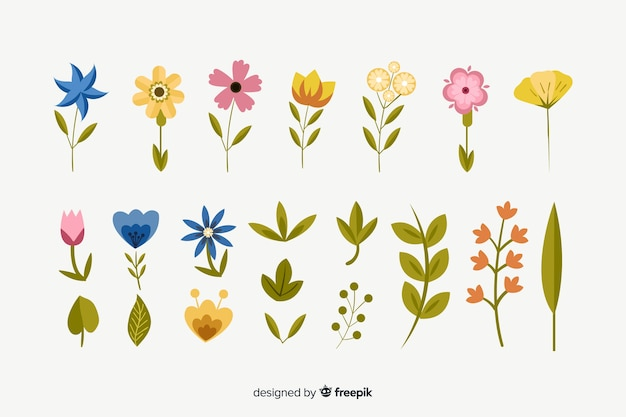 Flat flowers and leaves collection