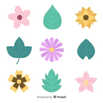Flat flowers and leaves