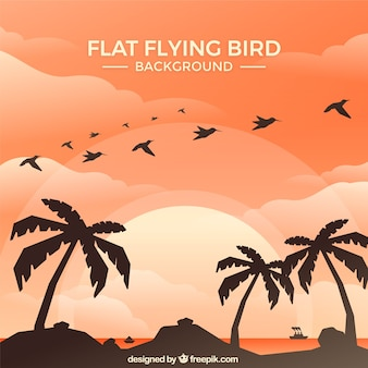 Flat flying bird background