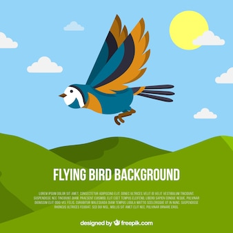 Плоский летающий птичий фон