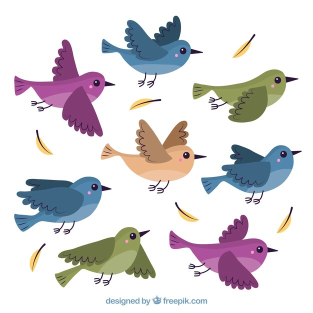 bird vectors photos and psd files free download rh freepik com flying birds clipart png flying birds clipart pictures