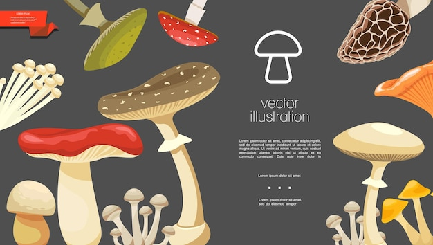 Flat forest mushrooms colorful template with morel chanterelle russula enokitake toadstools honey and fly agaric mushrooms