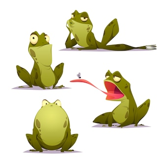 Flat frog character illustration