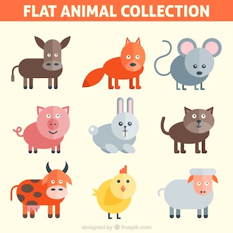 Flat funny animal collection