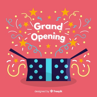 Flat grand opening with present